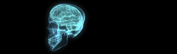 brain-001-1172516-1279x789